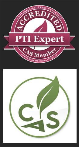 CAS PTI expert