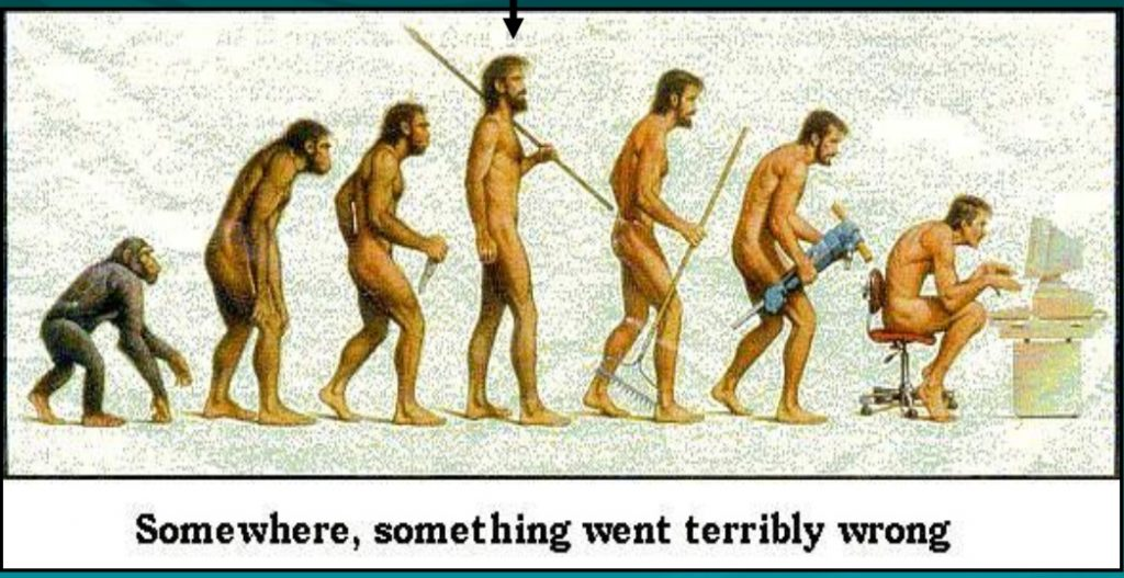 A tongue in cheek look at our evolution from primates to man to person sat hunched up staring at a computer